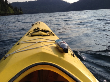 Sea kayaking in Halibut Cove