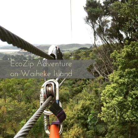 EcoZip Adventure on Waiheke Island