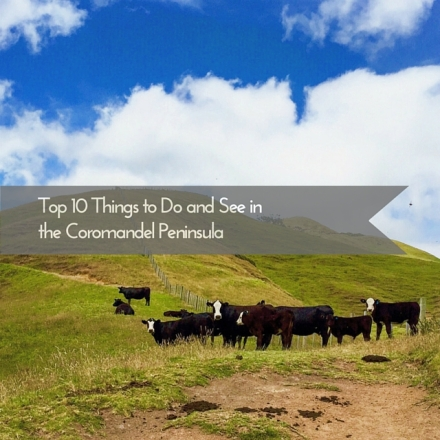 Top Ten Things to Do and See in the Coromandel Peninsula